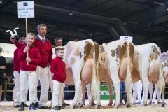 breedres-herd-haytema_151212-0001