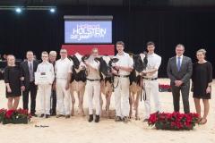 champions-junior-holstein_151212-0001